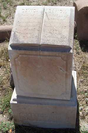 SULTAN, DAVID - Gila County, Arizona | DAVID SULTAN - Arizona Gravestone Photos