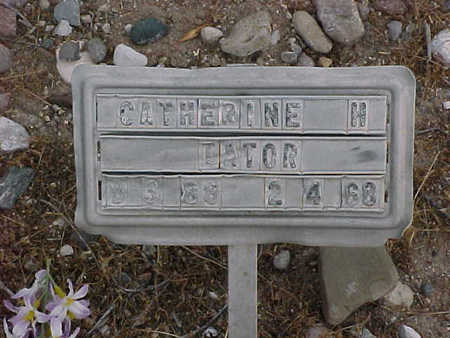 TATOR, CATHERINE  H. - Gila County, Arizona | CATHERINE  H. TATOR - Arizona Gravestone Photos