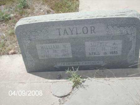 TAYLOR, WILLIAM W. - Gila County, Arizona | WILLIAM W. TAYLOR - Arizona Gravestone Photos