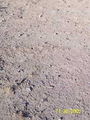 THOMAS, JOHN - Gila County, Arizona   JOHN THOMAS - Arizona Gravestone Photos
