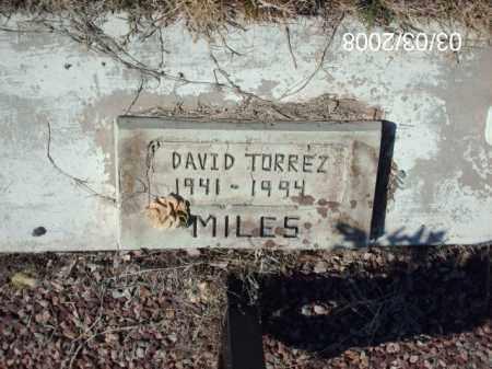 TORREZ, DAVID - Gila County, Arizona | DAVID TORREZ - Arizona Gravestone Photos