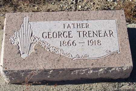 TRENEAR, GEORGE - Gila County, Arizona | GEORGE TRENEAR - Arizona Gravestone Photos