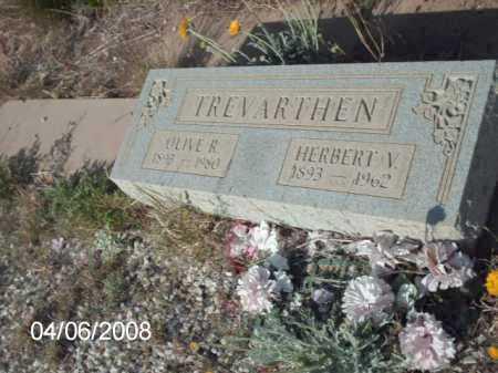 TREVARTHEN, OLIVE R. - Gila County, Arizona | OLIVE R. TREVARTHEN - Arizona Gravestone Photos