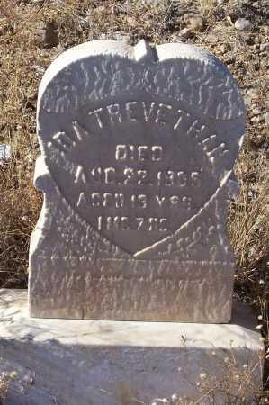 TREVETHAN, IDA - Gila County, Arizona   IDA TREVETHAN - Arizona Gravestone Photos