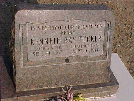 TUCKER, KENNETH  RAY - Gila County, Arizona   KENNETH  RAY TUCKER - Arizona Gravestone Photos