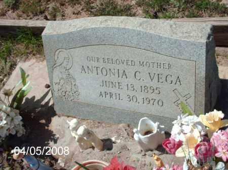 VEGA, ANTONIA C. - Gila County, Arizona | ANTONIA C. VEGA - Arizona Gravestone Photos