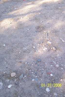 WALDRIP, VAUGHN - Gila County, Arizona | VAUGHN WALDRIP - Arizona Gravestone Photos