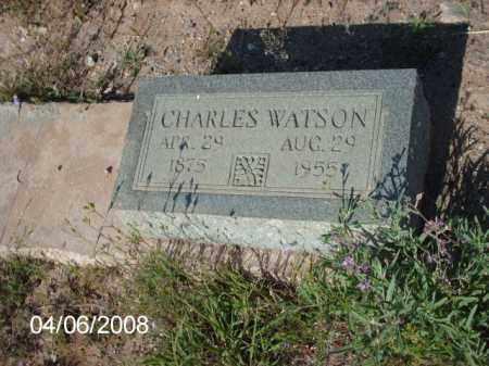 WATSON, CHARLES - Gila County, Arizona | CHARLES WATSON - Arizona Gravestone Photos