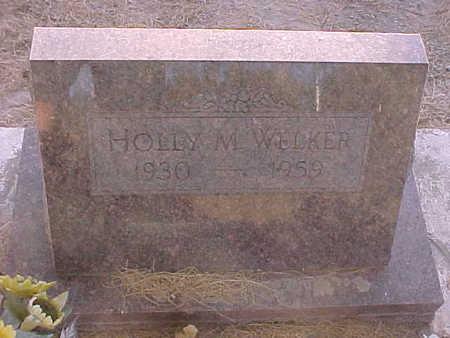 WELKER, HOLLY  M. - Gila County, Arizona | HOLLY  M. WELKER - Arizona Gravestone Photos