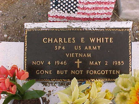 WHITE, CHARLES  E. - Gila County, Arizona | CHARLES  E. WHITE - Arizona Gravestone Photos