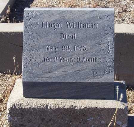 WILLIAMS, LLOYD - Gila County, Arizona | LLOYD WILLIAMS - Arizona Gravestone Photos