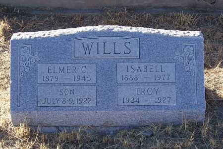 WILLS, ELMER C. - Gila County, Arizona | ELMER C. WILLS - Arizona Gravestone Photos