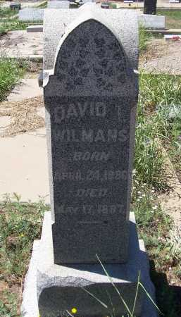 WILMANS, DAVID I. - Gila County, Arizona | DAVID I. WILMANS - Arizona Gravestone Photos