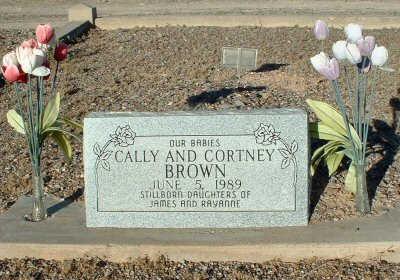 BROWN, CALLY - Graham County, Arizona | CALLY BROWN - Arizona Gravestone Photos