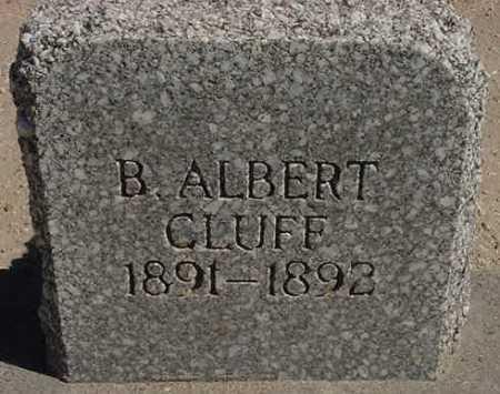CLUFF, B. ALBERT - Graham County, Arizona | B. ALBERT CLUFF - Arizona Gravestone Photos