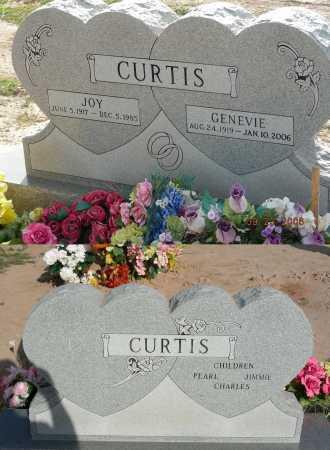 CURTIS, GENEVIE - Graham County, Arizona | GENEVIE CURTIS - Arizona Gravestone Photos