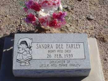 FARLEY, SANDRA DEE - Graham County, Arizona | SANDRA DEE FARLEY - Arizona Gravestone Photos