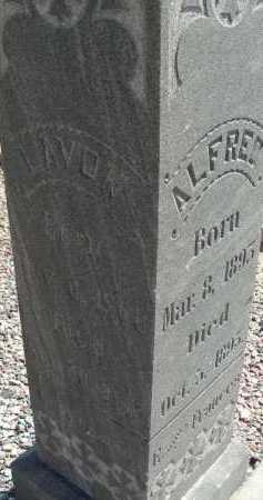 HANCOCK, ALFRED - Graham County, Arizona   ALFRED HANCOCK - Arizona Gravestone Photos