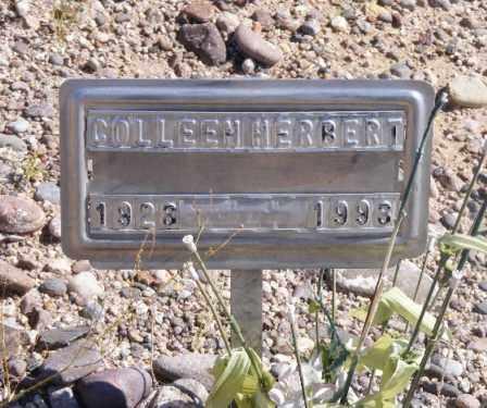 PROCK HERBERT, VIRGINIA COLLEEN - Graham County, Arizona | VIRGINIA COLLEEN PROCK HERBERT - Arizona Gravestone Photos