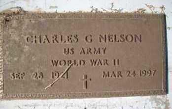 NELSON, CHARLES - Graham County, Arizona | CHARLES NELSON - Arizona Gravestone Photos