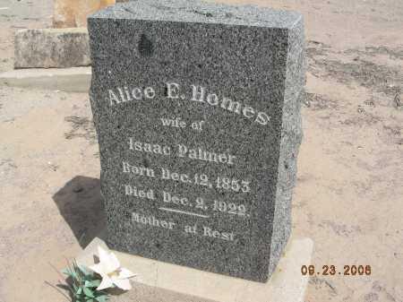HOMES PALMER, ALICE E - Graham County, Arizona   ALICE E HOMES PALMER - Arizona Gravestone Photos