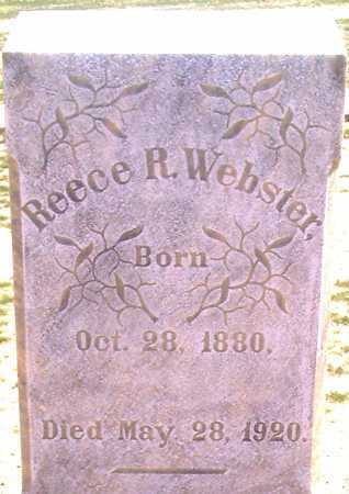 WEBSTER, REESE RIGBY - Graham County, Arizona   REESE RIGBY WEBSTER - Arizona Gravestone Photos