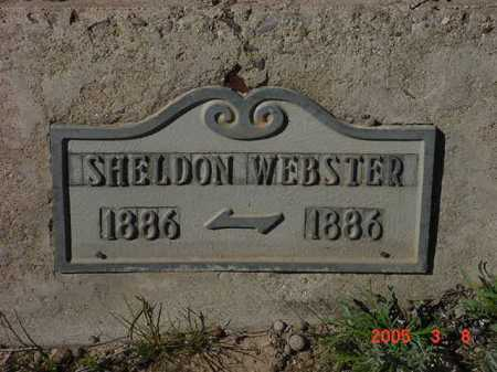 WEBSTER, SHELDON CLEON - Graham County, Arizona | SHELDON CLEON WEBSTER - Arizona Gravestone Photos