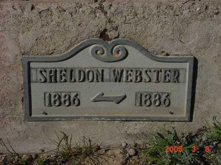 WEBSTER, SHELDON CLEON - Graham County, Arizona   SHELDON CLEON WEBSTER - Arizona Gravestone Photos