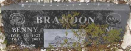 BRANDON, JUNE - La Paz County, Arizona | JUNE BRANDON - Arizona Gravestone Photos
