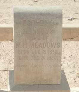 MEADOWS, ESTHER C. - La Paz County, Arizona | ESTHER C. MEADOWS - Arizona Gravestone Photos