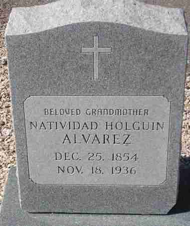 ALVAREZ, NATIVIDAD HOLGUIN - Maricopa County, Arizona   NATIVIDAD HOLGUIN ALVAREZ - Arizona Gravestone Photos