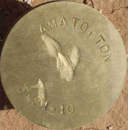 AMATO, TON - Maricopa County, Arizona | TON AMATO - Arizona Gravestone Photos