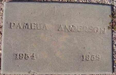 ANDERSON, PAMELA JOYCE - Maricopa County, Arizona | PAMELA JOYCE ANDERSON - Arizona Gravestone Photos