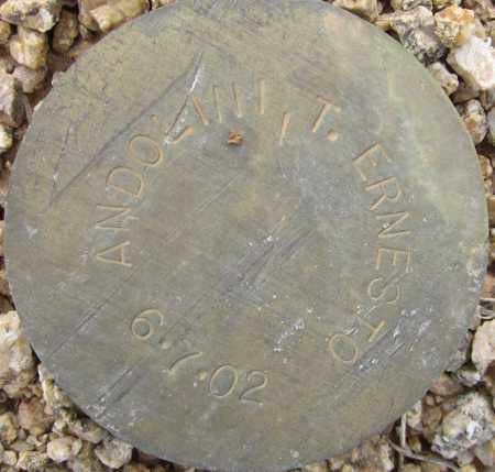 ANDOLINI, T. ERNESTO - Maricopa County, Arizona   T. ERNESTO ANDOLINI - Arizona Gravestone Photos