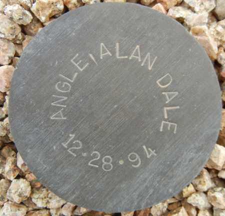 ANGLE, ALAN DALE - Maricopa County, Arizona | ALAN DALE ANGLE - Arizona Gravestone Photos