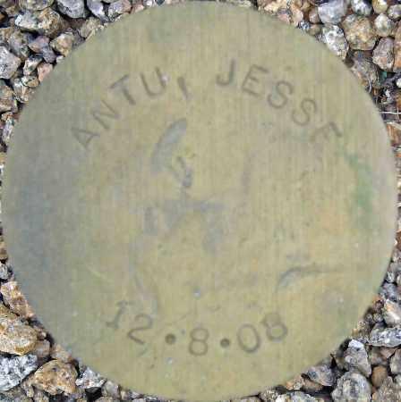 ANTU, JESSE - Maricopa County, Arizona | JESSE ANTU - Arizona Gravestone Photos