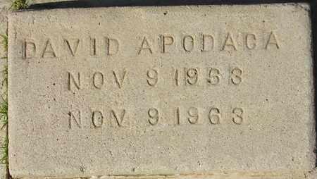 APODACA, DAVID - Maricopa County, Arizona   DAVID APODACA - Arizona Gravestone Photos