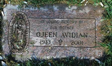 AVIDIAN, OJEEN - Maricopa County, Arizona | OJEEN AVIDIAN - Arizona Gravestone Photos