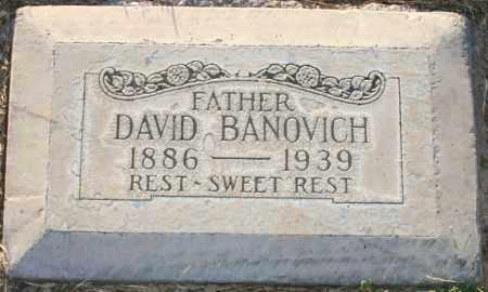 BANOVICH, DAVID - Maricopa County, Arizona   DAVID BANOVICH - Arizona Gravestone Photos