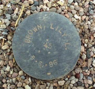 BROWN, LILY L. - Maricopa County, Arizona | LILY L. BROWN - Arizona Gravestone Photos