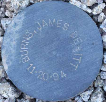 BURNS, JAMES DEWITT - Maricopa County, Arizona | JAMES DEWITT BURNS - Arizona Gravestone Photos