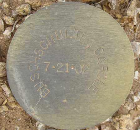 BUSCHSCHULTE, CAROLE - Maricopa County, Arizona | CAROLE BUSCHSCHULTE - Arizona Gravestone Photos