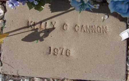 CANNON, KELLY C. - Maricopa County, Arizona | KELLY C. CANNON - Arizona Gravestone Photos