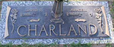 CHARLAND, DAVID R - Maricopa County, Arizona | DAVID R CHARLAND - Arizona Gravestone Photos