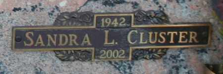 CLUSTER, SANDRA LEE - Maricopa County, Arizona | SANDRA LEE CLUSTER - Arizona Gravestone Photos