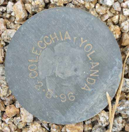 COLECCHIA, YOLANDA - Maricopa County, Arizona | YOLANDA COLECCHIA - Arizona Gravestone Photos