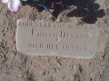 DELGADO, EMILIO - Maricopa County, Arizona | EMILIO DELGADO - Arizona Gravestone Photos
