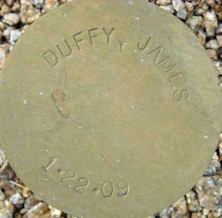 DUFFY, JAMES - Maricopa County, Arizona | JAMES DUFFY - Arizona Gravestone Photos