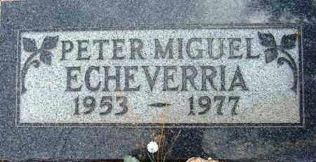 ECHEVERRIA, PETER MIGUEL - Maricopa County, Arizona | PETER MIGUEL ECHEVERRIA - Arizona Gravestone Photos