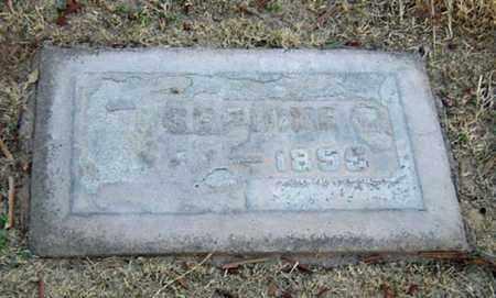 ELVEY, JOSEPHINE - Maricopa County, Arizona | JOSEPHINE ELVEY - Arizona Gravestone Photos